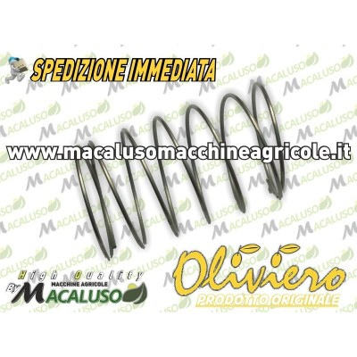 Molla trasmissione x Oliviero E-Tech Evolution Classic Light Sinthesis T005-ZHECSL