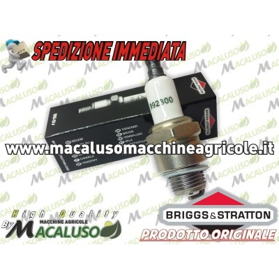 Candela BRIGGS & STRATTON 992300
