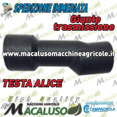 Raccordo in plastica trasmissione abbacchiatore Alice Campagnola testa sferzatore movimento rastrelli 0233 0002