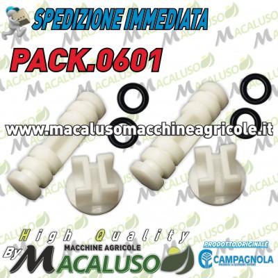 Kit 2 Pistoncino + Pastiglia x abbacchiatore pneumatico Campagnola PACK0601
