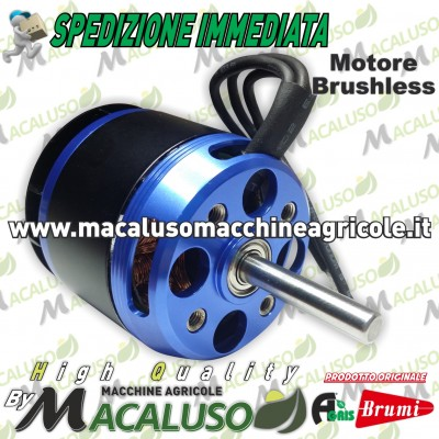 Motore Brushless per Olispeed Evolution Brumi Agris 451100071