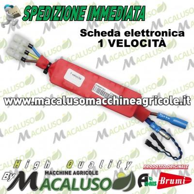Scheda elettronica 1 velocità per Olispped Evolution Brumi Agris 455100016