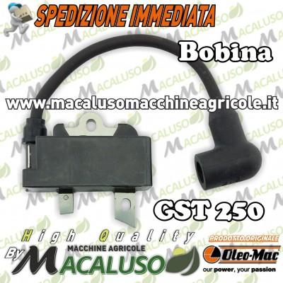 Bobina Motosega Oleomac GST250 Efco MTT2500 modulo accensione Emak gst 250 mtt 2500