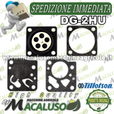 Serie membrane Tillotson DG-2HU Originali