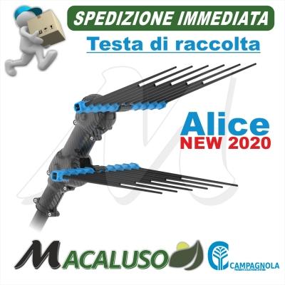 Testa di raccolta Abbacchiatore Campagnola Alice PREMIUM elettrico a Batteria NEW 2020 ETRA 0125