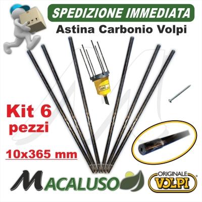 Kit 6 Asta carbonio abbacchiatore Volpi Giulivo 10 x 365 astina rebbio bacchetta Oliviero 701 2